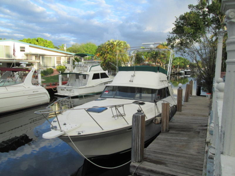 1981 Silverton 34 Convertible located in Florida for sale